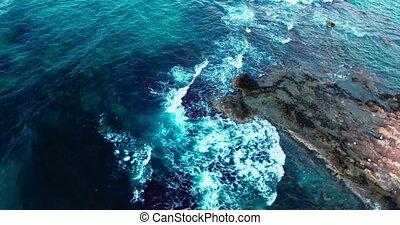 mooi, evenng, vliegen, golvend, seashore, boven