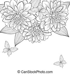 mooi, frame, vlinder, zwarte achtergrond, monochroom, dahlia, witte bloemen