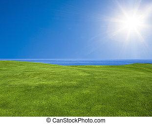mooi, groen landschap