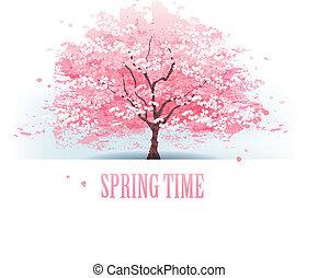 mooi, kersenboom, blossom