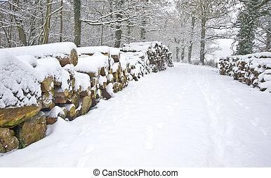 mooi, knippen, taste, winter, sneeuw, diep, scène, maagd, bos, fris, steegjes, kanten, hout