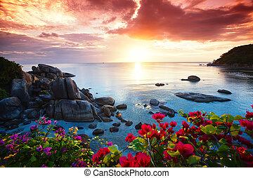 mooi, koh samui, glorie, vakantiepark, morgen, tranquil, strand