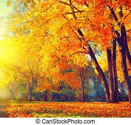 mooi, natuur, autumn., park, herfstachtig, scene., herfst
