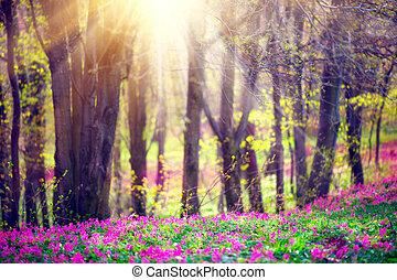 mooi, natuur, bomen., bloeien, park, gras, groene, lente, wilde bloemen, landscape