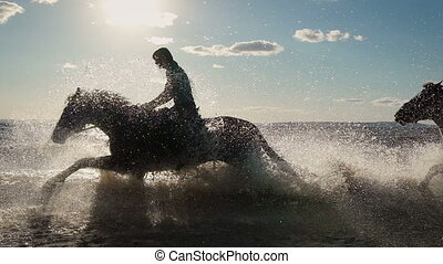 mooi, paarde, jonge, paardrijden, strand, vrouwen