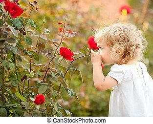mooi, roos, kind, ruiken