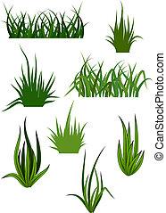 motieven, gras, groene