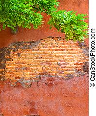 muur, mooi, italië, stucco, blootgestelde, sinaasappel, baksteen, kapot
