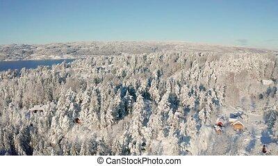 naar, winter, besneeuwd, vliegen, fjord, bos, boven, koude, episch