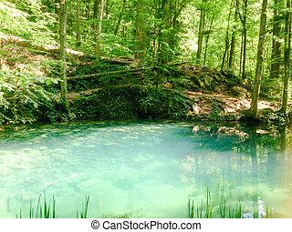natuur landschap, bomen, river., bos, rivier, bergen
