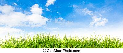 natuur, lente, achtergrond, back, tijd, hemel, zomer, blauwe , gras