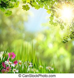 natuurlijke , abstract, achtergronden, leaves., ontwerp, jouw, esdoorn