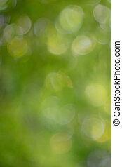 natuurlijke , kleurrijke, effect., vaag, bokeh, groene achtergrond