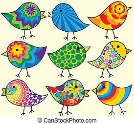 negen, vogels, kleurrijke