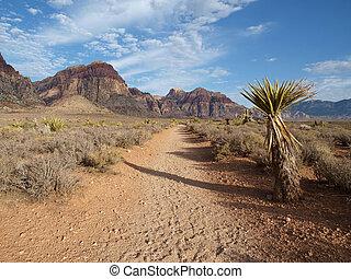 nevada, woestijn, spoor