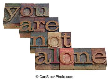niet, alleen, u