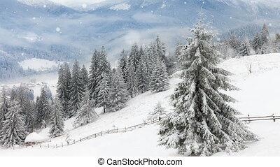 nieuw, kerstmis, achtergrond, winter, jaar