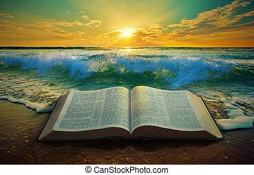 oceaan, zonopkomst, bijbel