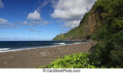 oever, wrakkigheid, hawaiian, tijd