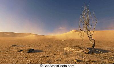 ondergaande zon , bomen, dood, woestijn