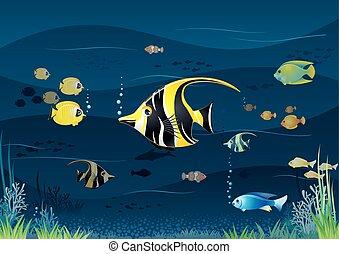 onderwater, vector, spotprent, achtergrond.