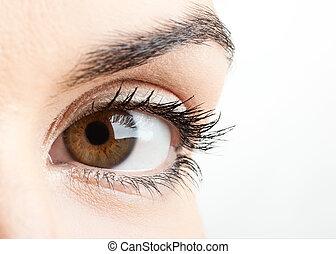 oog, vrouwlijk