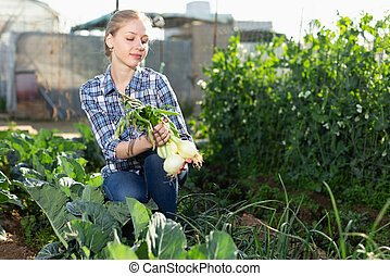 oogst, ui, vrouw, fris