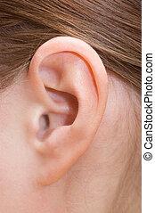 oor, closeup, menselijk