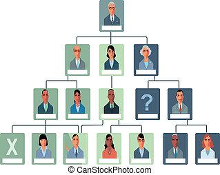 organisatie, tabel, structuur