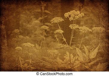 ouderwetse , abstract, bloemen, achtergronden, bos