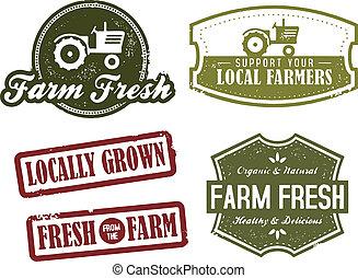 ouderwetse , landbouw, verse markt