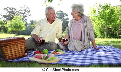 paar, hebben, gepensioneerd, samen, picknick