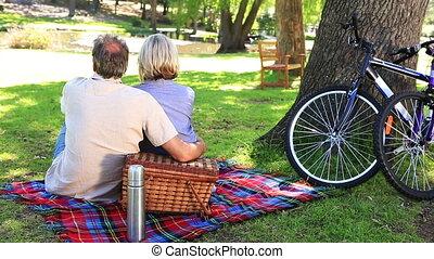 paar, hebben, vrolijke , park, picknick
