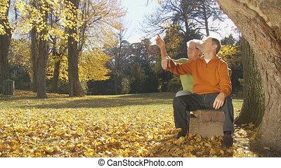 paar, herfst, deel, senior, het genieten van, dag