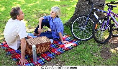 paar, park, picknick, vrolijke