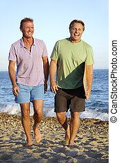 paar, strand, vrolijk, vrolijke