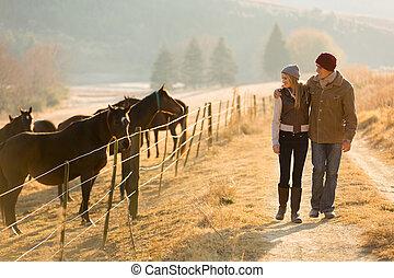 paar te lopen, jonge, paarde, boerderij