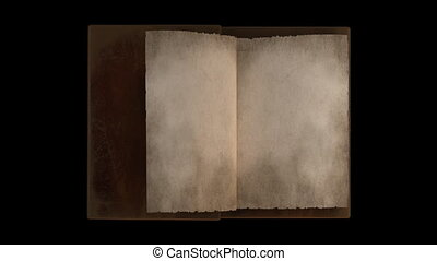 pagina's, boek, geanimeerd, draaien, oud