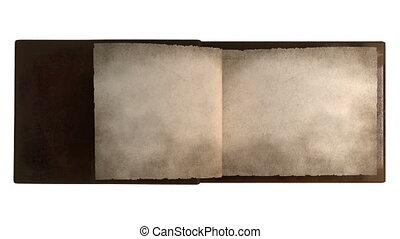 pagina's, boek, het wegknippen, ouderwetse