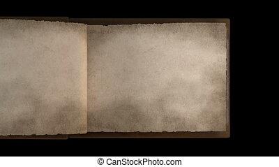 pagina's, boek, oud, draaien
