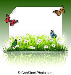 papier, frame, zomer