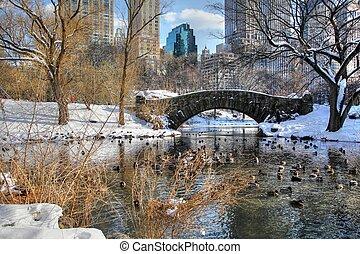 park, 160, centraal, winter