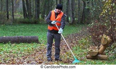 park, bladeren, arbeider, collecteren