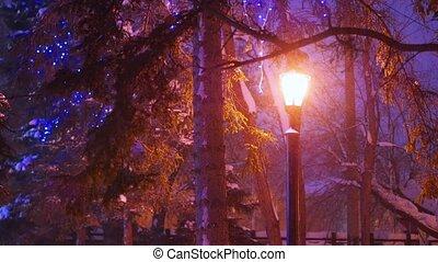 park, enkel, sneeuwval, verlicht, nacht, lantaarntje