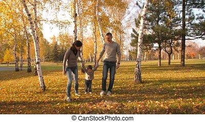 park, het lopen van de familie, herfst