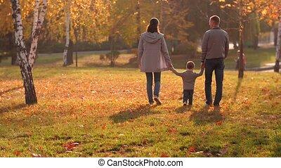 park, het lopen van de familie, vrolijke