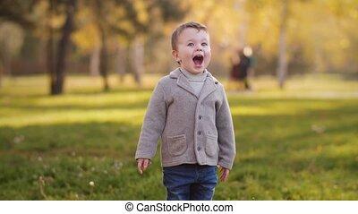 park, lachen, jongen, herfst