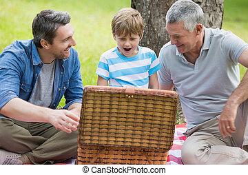 park, mand, grootvader, vader, zoon, picknick