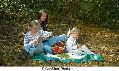 park, picknick, hebben, gezin