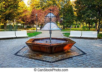 park, polen, fontijn, groene, sopot
